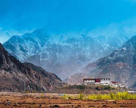 ladakh_snow_leopard_trek